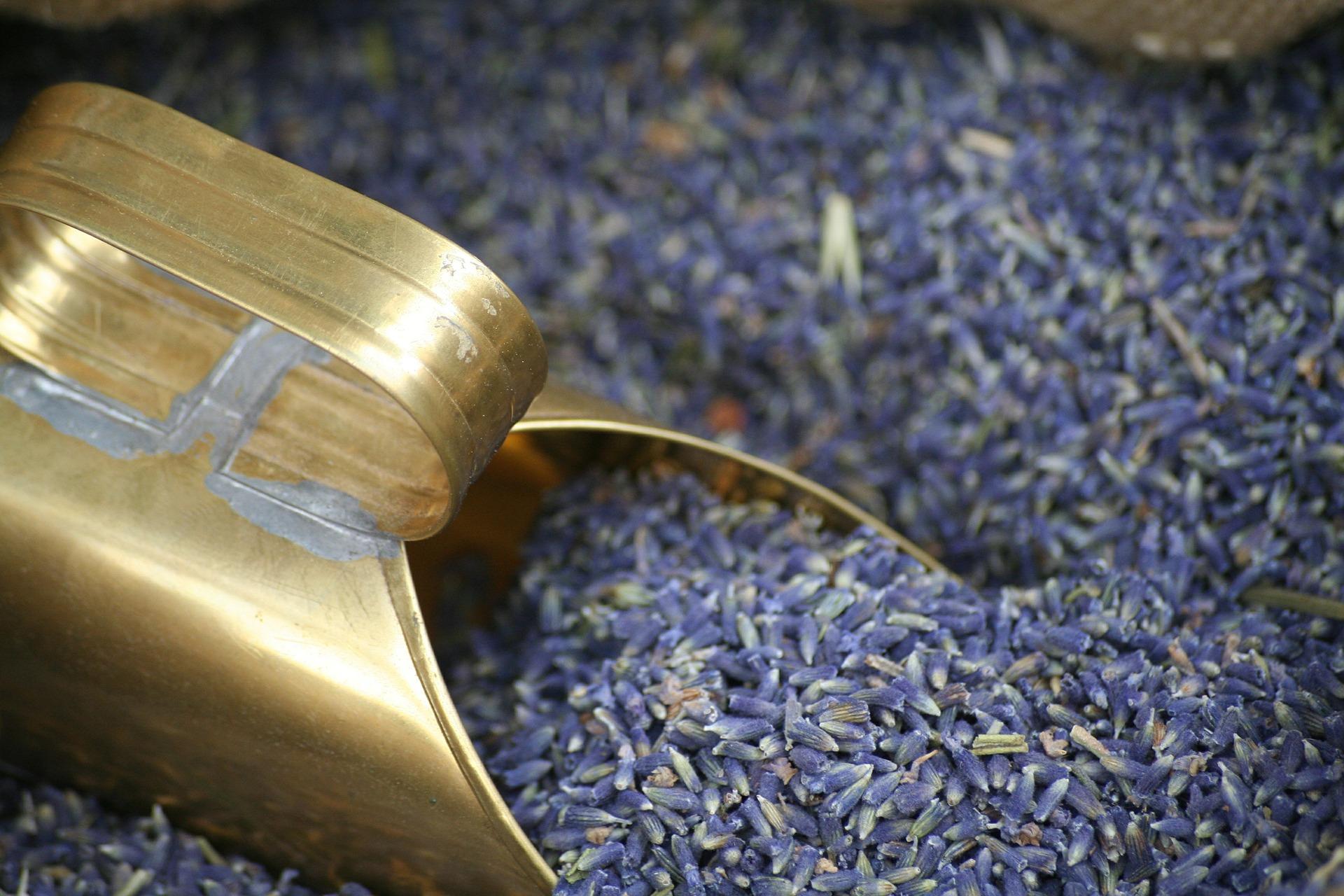 lavender for stress